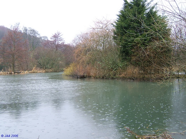Milton Abbey Lake