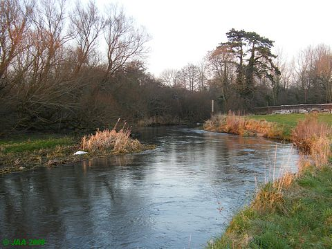 The River Frome, Holmebridge