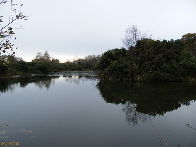 Triangle Pond