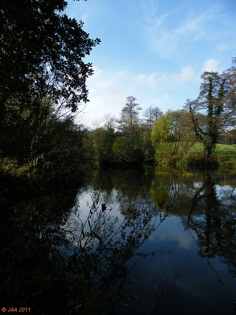 The Lower Pond