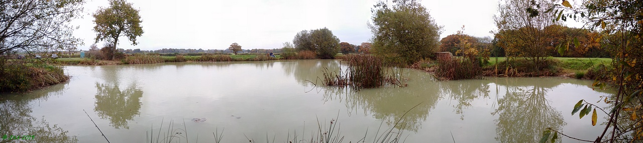 Belfry Coarse Fishery, Belfry Pond
