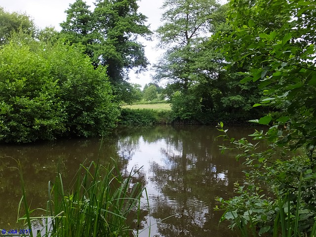 The Lower Saxon Pond